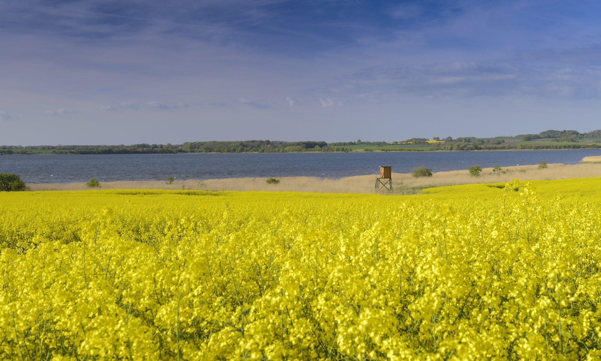 Dassow - Tor zur Ostsee